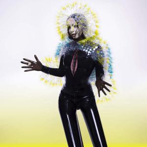 Björk_-_Vulnicura
