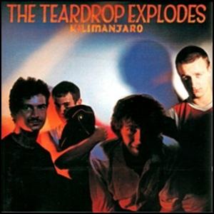 teardrop_explodes_-_kilimanjaro