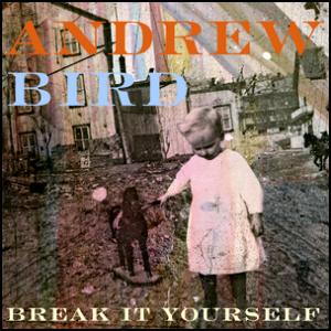 break_it_yourself